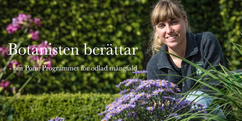 Stina Weststrand, botaniker