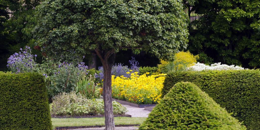Uppsala linneanska trädgårdar